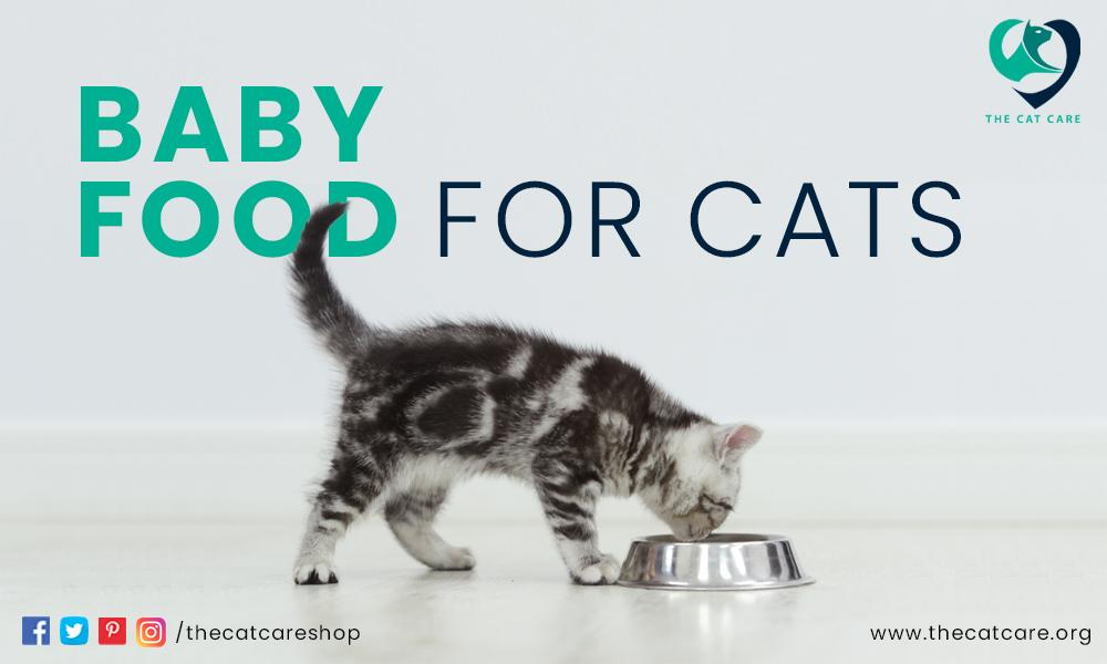 baby food for cats
